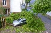 Schwere Sturmfolgen in Essens Straßen - Fotoquelle: www.essen.de