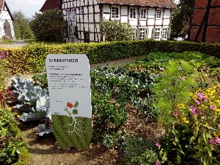 Gartenarbeit als Heilmittel - Foto Schruck